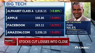 Dan Niles on which stocks will rally amid the pandemic