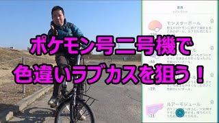 【ポケモンGO】ポケモン号二号機出動!ラブカス色違いを狙う!