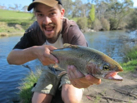 Spinning For Trout, Snowy Mountains