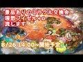 【ポケモンUSM】ミラクル交換会(理想ブイゼル+α)【ポケモンSM】