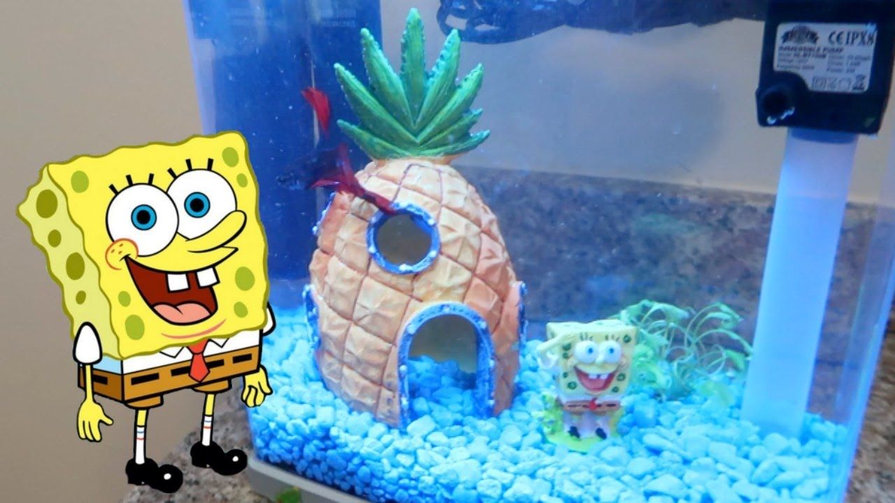 SPONGEBOB FISH TANK DECOR! | ThePlusSideOfThings - YouTube