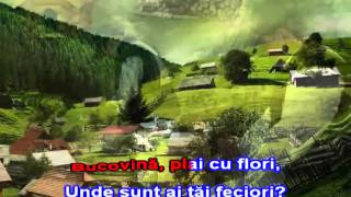 GRIGORE LESE - CANTA CUCUL BATA-L VINA, Karaoke Romanesti