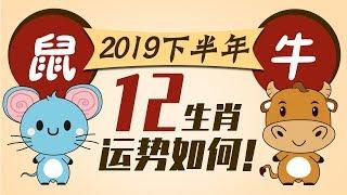 2019【生肖鼠牛】下半年运势