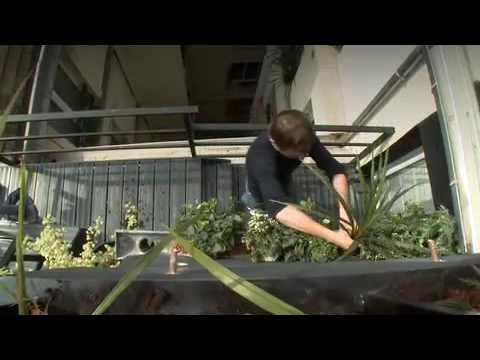 Comment amnager un appartement avec terrasse  Relooking dco AvantAprs  YouTube