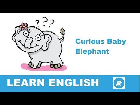 Curious Ba Elephant  Short Story in English