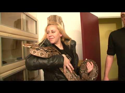 'Chez ma mère, mes pythons et moi on n'est plus les bienvenus'