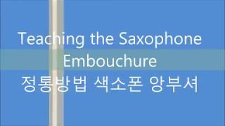 Teaching the Saxophone Embouchure 국제표준 색소폰앙부셔 배우기 정통색소폰교본 저자 김순일