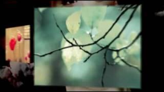 Angham - New 2009 Album Promotion (2)