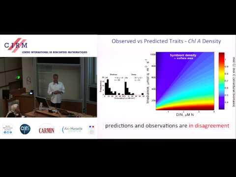 Erik Muller:  Dynamic Energy Budget Theory as integrative hub for evaluating organismal [...]