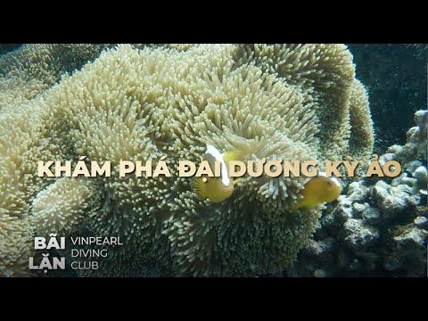 Quần thể du lịch - nghỉ dưỡng - vui chơi - khám phá biển hàng đầu Đông Nam Á