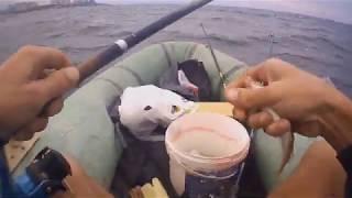 Морская рыбалка в Одессе Осенний клев голыша