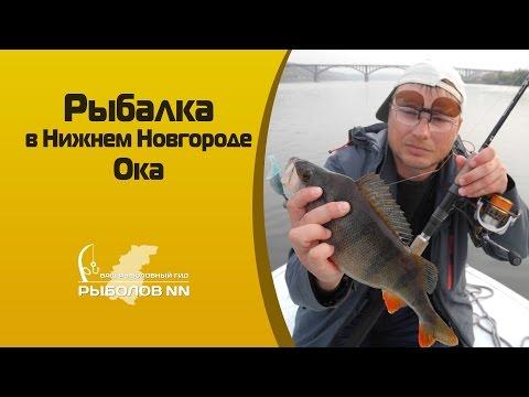Совместные покупки - Нижний Новгород - СП : Пристрой