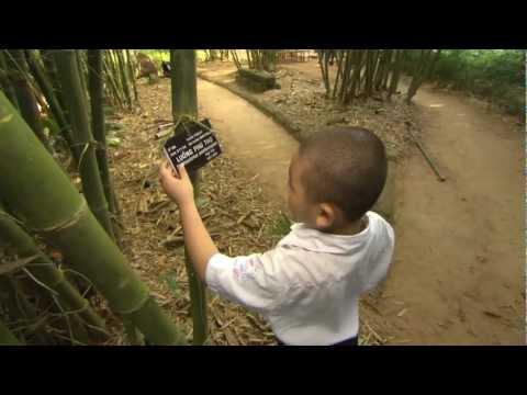 Vietnam Bamboo Village