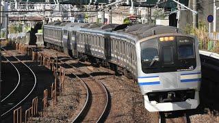 E217系 横クラY-49編成 快速千葉行 船橋~津田沼通過【4K】