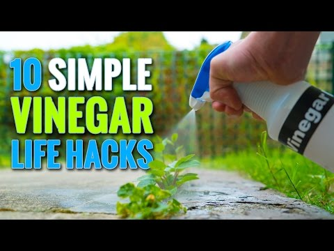 Thumbnail: 10 Simple Vinegar Life Hacks To Try At Home