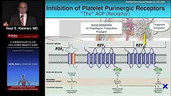 Coagulation, Platelets & Antiplatelet Therapy (Neal S. Kleiman, MD) Saturday,, August 20, 2016