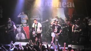 Zebrahead - Born To Lose