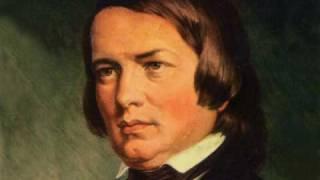 Robert Schumann - Liederkreis Op 39 - XI - Im Walde