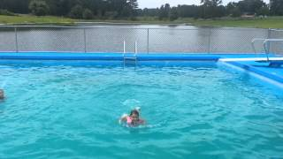 Bella anne's first high dive