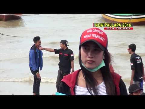 Goyah   Anisa Rahma NEW PALLAPA Terbaru Pesta Laut Cah  PROWEX