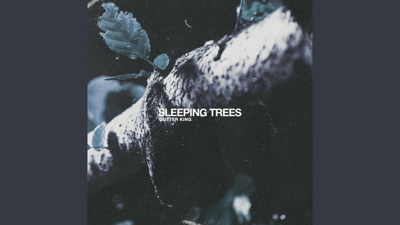 Download Sleeping Trees