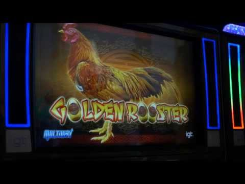Golden Rooster Slot - Swinomish Casino & Lodge