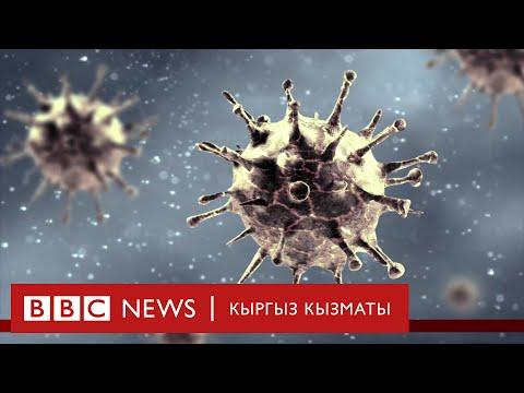 Коронавирустун экономикага таасири кандай болот?  - BBC Kyrgyz