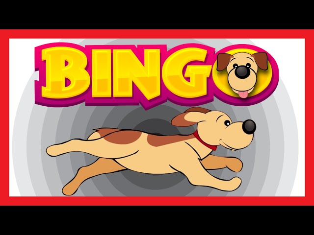 BINGO DOG SONG