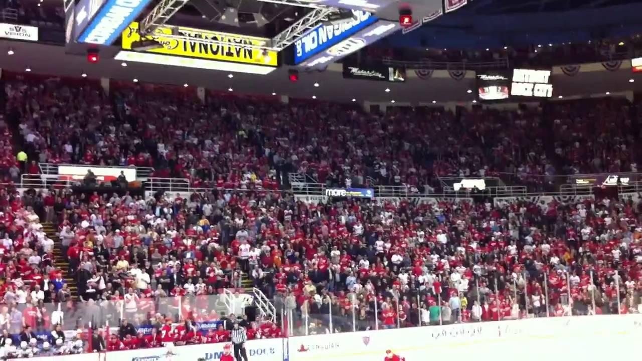 52edd1ea1fd Red Wings fans