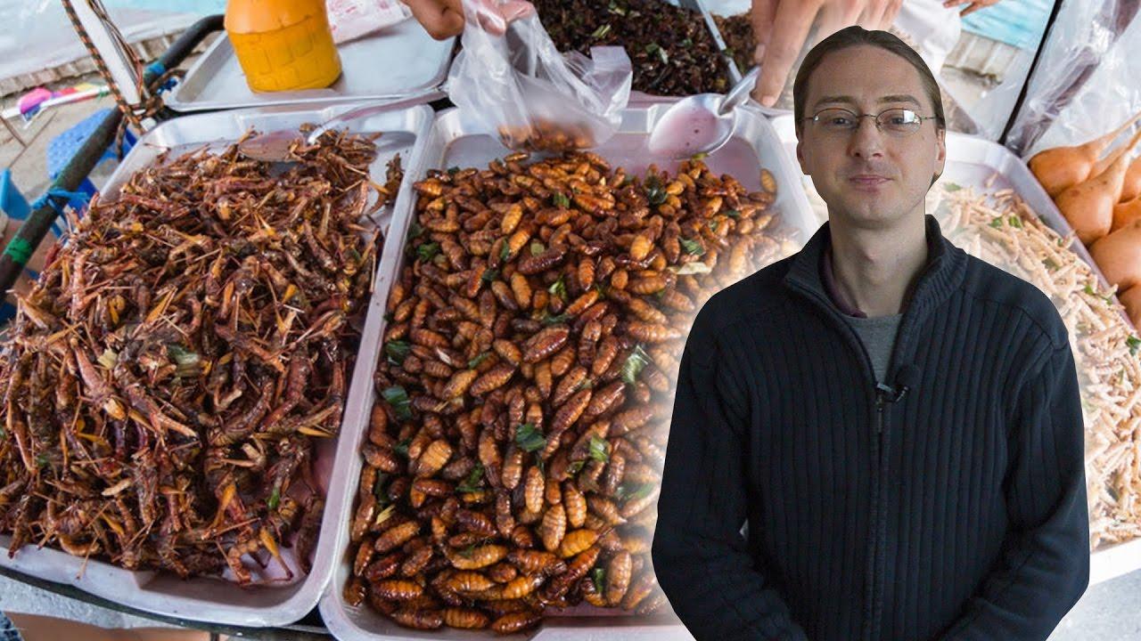Asian bugs that eat furniture, emily browning neked