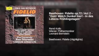 """Beethoven: Fidelio op.72 / Act 2 - """"Gott! Welch Dunkel hier! - In des Lebens Frühlingstagen"""""""