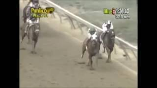 Preakness Stakes 2001 - Point Given