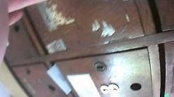 Разнасяне на флаери за ELACP в Лозенец 0070 001