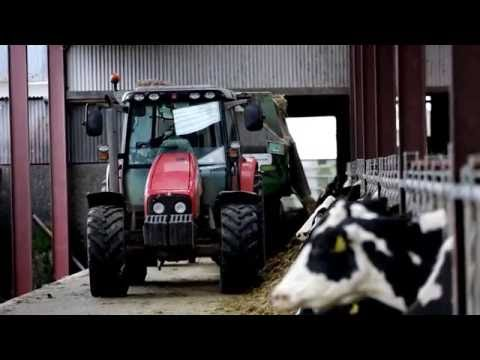 Farm accident survivor story by Wallace Gregg