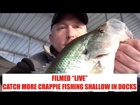 """LIVE"" Crappie fishing tips - No Editing - ""Shallow Dock Crappie"""