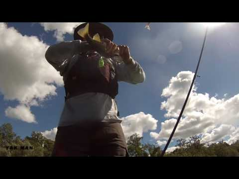 On The Hunt For Smallmouth /Grand River Cambridge to Paris/Kayak Fishing 1