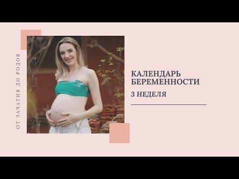 3 Неделя  Беременности   Признаки Беременности.