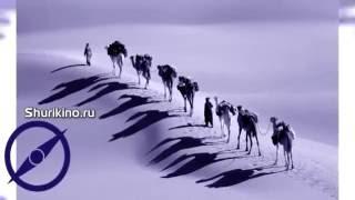 Видеоролик фильм видео презентация ролик для стенда на выставке