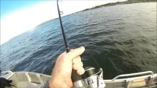 Fishing Lake Macquaire 11 06 14 Coal Point