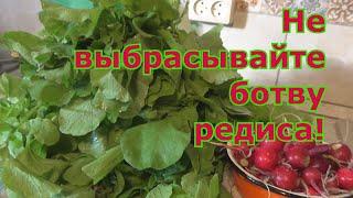 Как использовать листья редиса! Несколько рецептов приготовления.