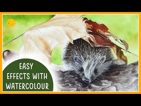 EASY WATERCOLOUR effects and techniques for beginners | HEDGEHOG tutorial