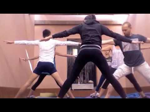 Yoga and Acro monkeys
