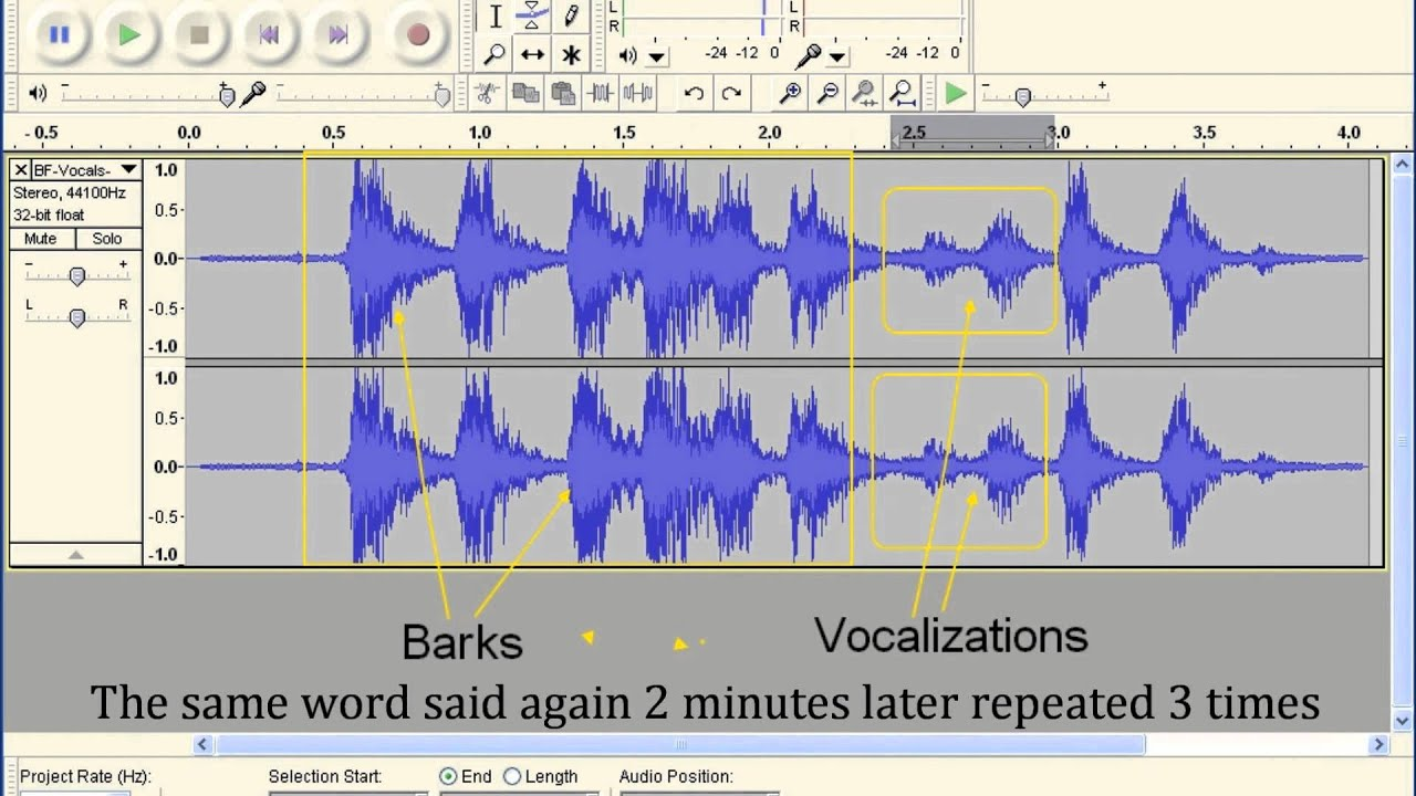 Bigfoot vocalizations