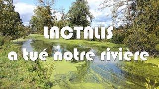 Lactalis a tué notre rivière | HD