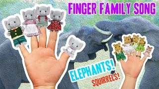 The Finger Family Elephant Song + Squirrel Finger Family for KIDS   Pop Punk Kids Music   Animals