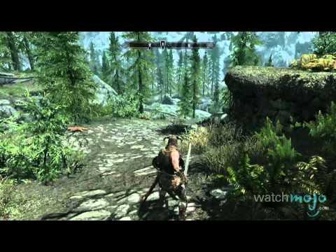 The Elder Scrolls V: Skyrim - 7 Things You Should Know