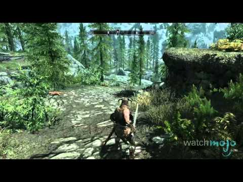 The Elder Scrolls V: Skyrim - 7 Things You Should Know