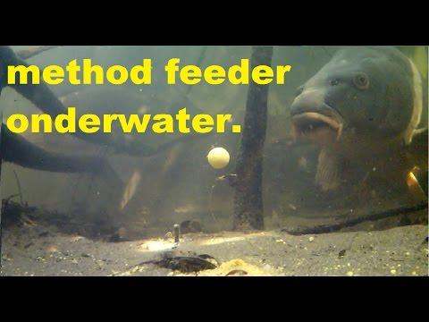 Karpervissen Met De Method Feeder Onderwater Beelden./Carp Fishing With A Method Feeder Underwater.