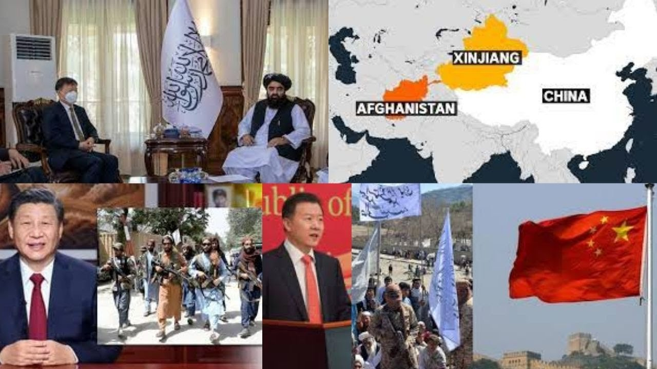We'll not interfere in Afghanistan's internal affairs: China to Taliban
