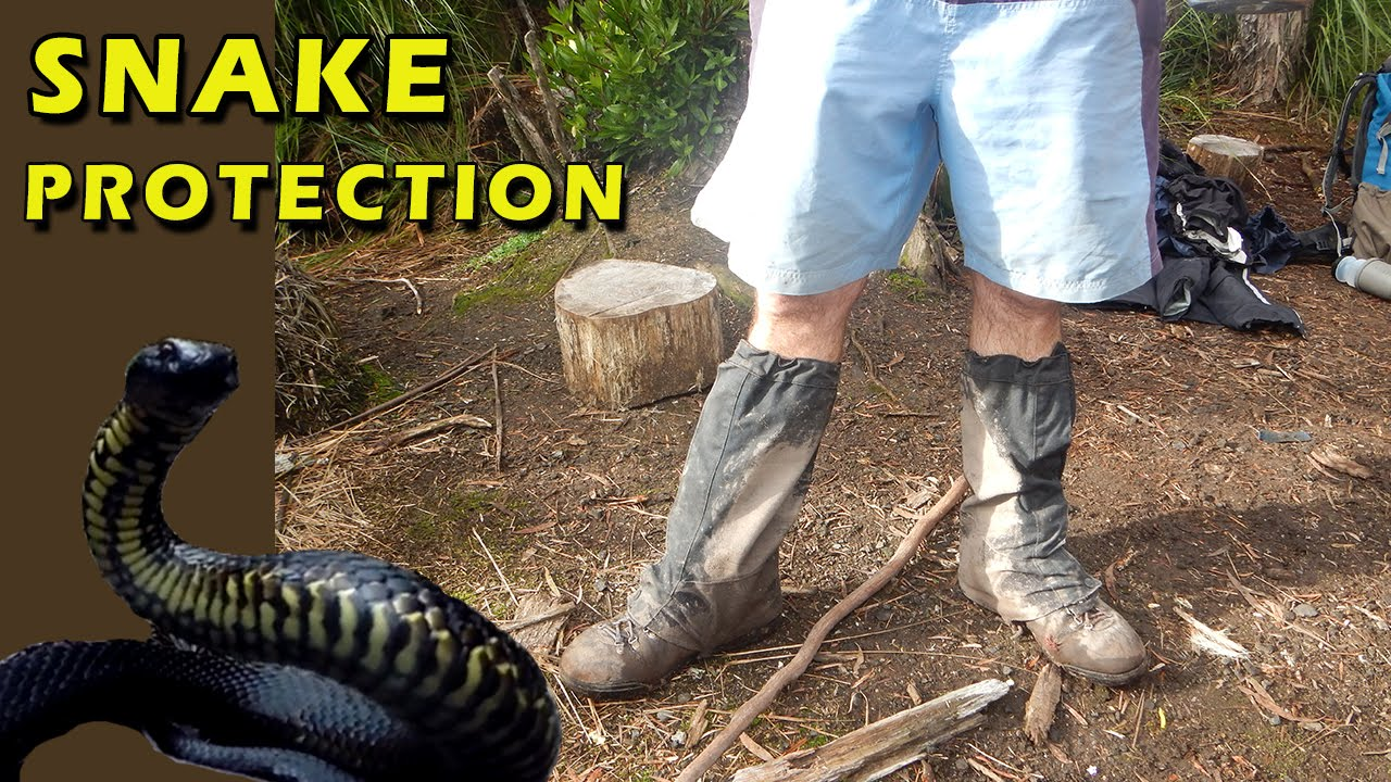 Leg Protection From Snakes Hiking Boots And Waterproof